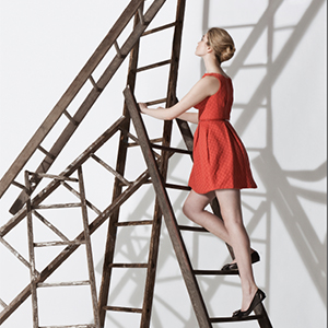 a picture of a woman climbing a ladder, link loads PDF document in new browser window